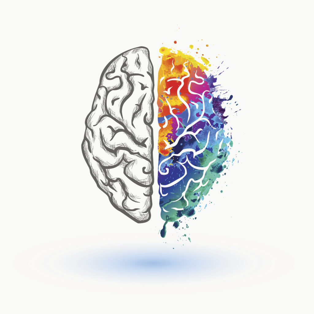 Cartoon of right brain vs left brain symbolizing how color plays a role in affecting emotions